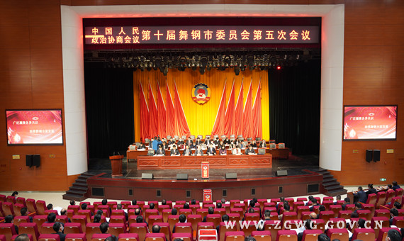 市政协十届五次会议举行第二次全体会议 (2).jpg
